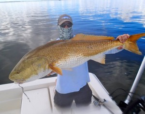 The Redfish are HOWLING!