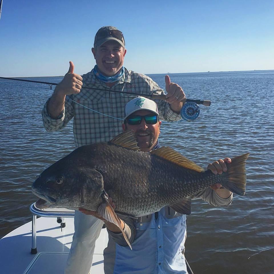Black drum hit titusville skiff life fishing boating for Black drum fishing