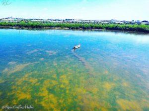 @ryancollinsmedia#fishing #saltwater #flats #flatsfishing #skinnywater #backw…