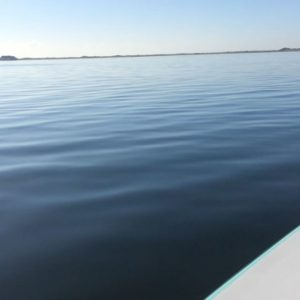Smooth #redfishonfly #hellsbayboatworks #skifflife #seamasterreels…