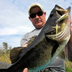 Myth BUSTED!  Livetarget's Baitball DOES catch fish!