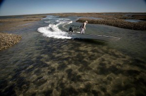 Glide across the flats with East Cape's newest skiff.