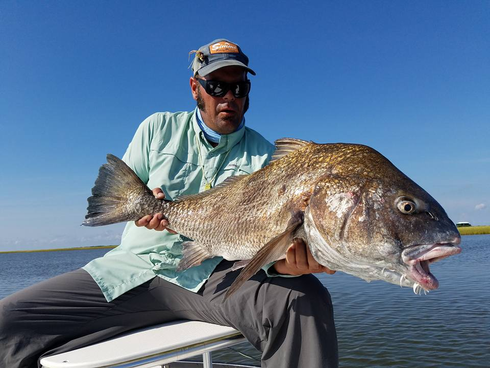 Capt. Ron Ratliff with a rod bending Black Drum in Louisiana.