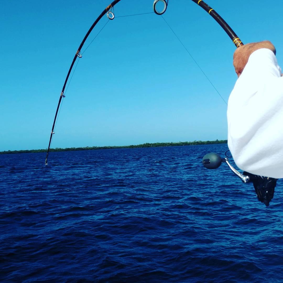 Fishing Southwest Florida - Gulf Coast