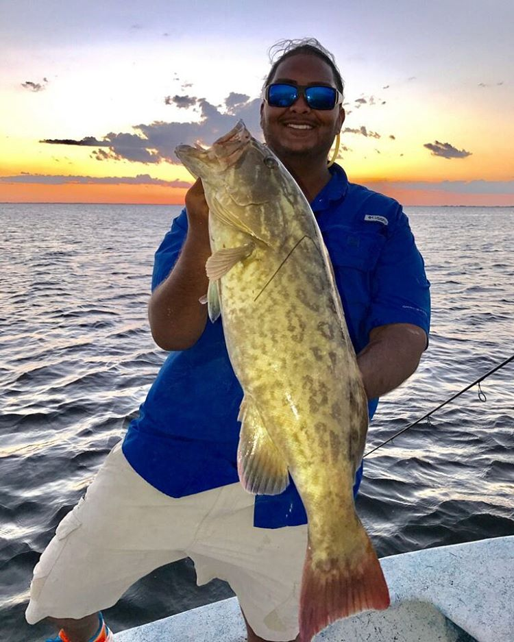 Amazing day in Southwest Florida!  #mustadhooks #FischCharters #grouper #gag #fi...