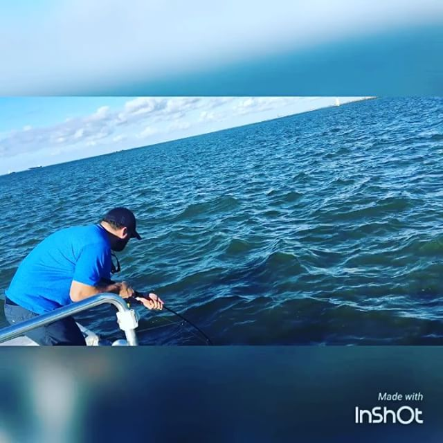 "Fighting a 40"" Bull Red on light tackle. #htx #bullred #fishing #saltwater #skif..."