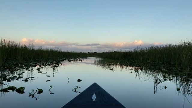 H:SKIFF.....Finally in the US playing in the Everglades @hayaari_marine @southfl...