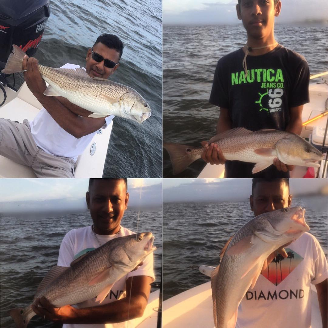 These guys had a great time catching 40+ redfish and some black drum with Capt. ...