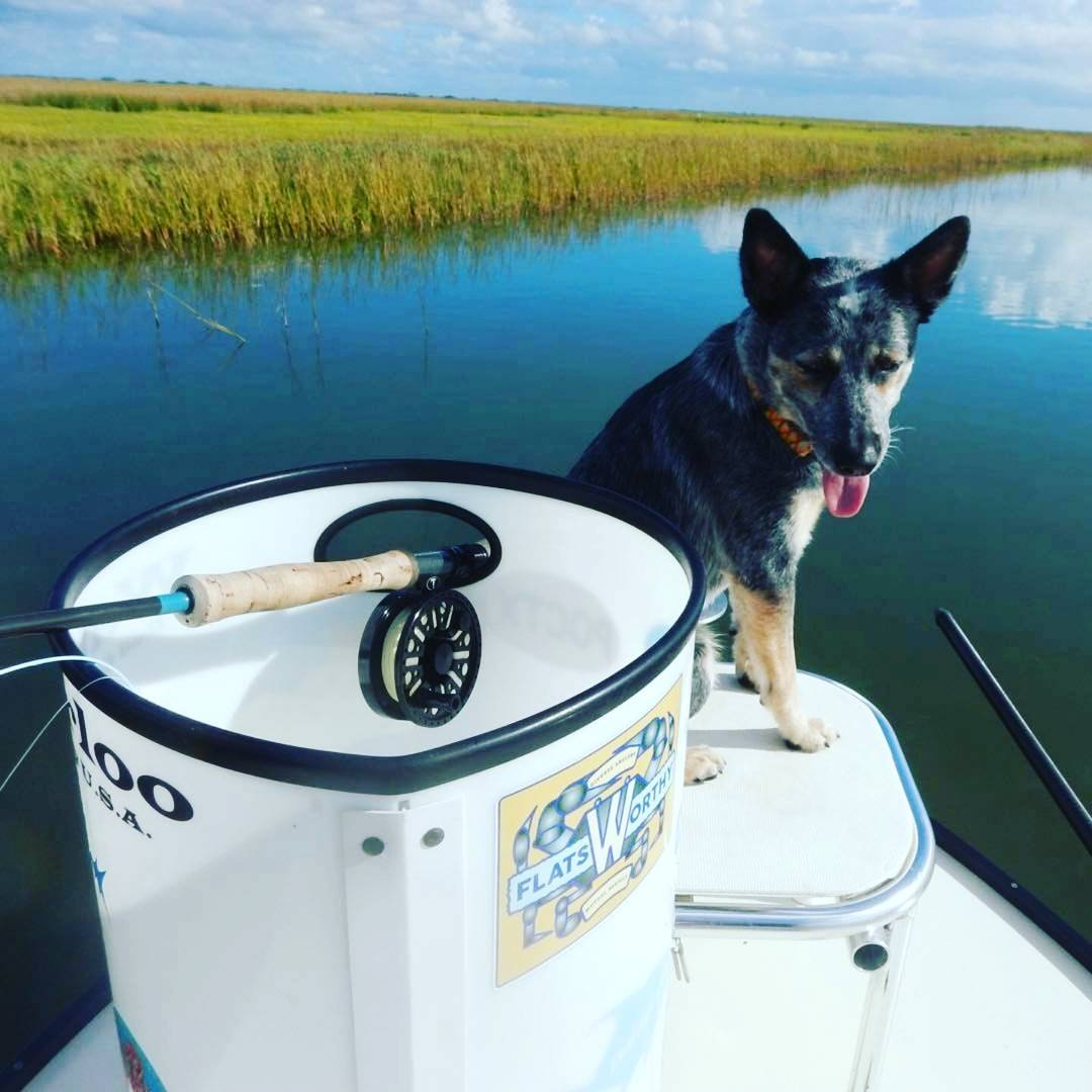 Whip chose a beautiful day for his first skiff trip out of Port O'Connor, TX. @s...