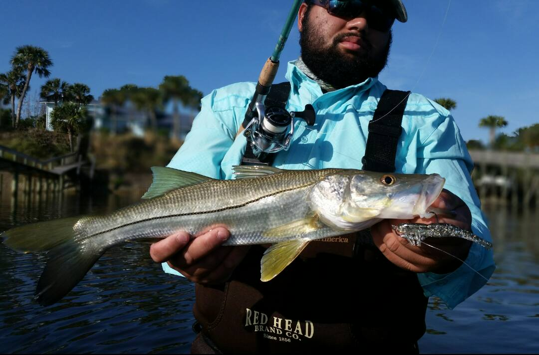 Port St. Lucie, Florida Snook