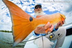 There's gold in 'dem Redfish!