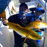 Pensacola Bay Doubles Redfish