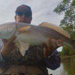 South Carolina fishing, lethal in a kayak