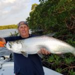 Naples Florida Tarpon…Add to the Bucket List!