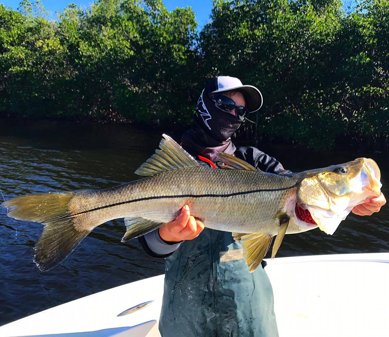 Monster Snook Fishing in Ruskin/Tampa Bay
