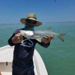 sanibel-beach-snook-fishing