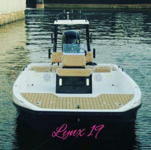 Lynx 19                 …