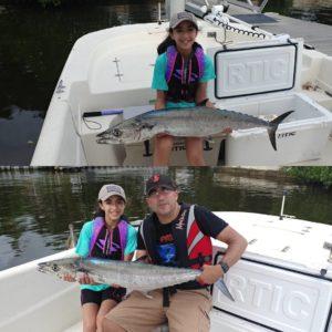 Tampa Bay Kingfish!