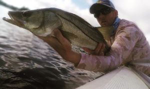 Snook spots are like gold.