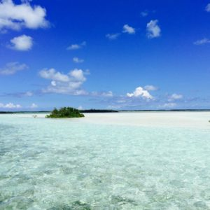 Bonefish Territory! Sooooo beautiful, simply stunning! – –   …