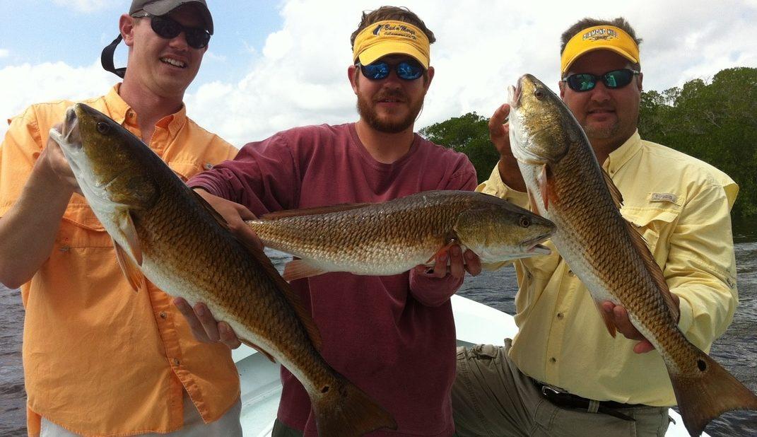 Redfish Charter Fishing Fort Myers
