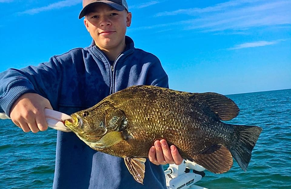 Trippletail Fishing in Fort Myers