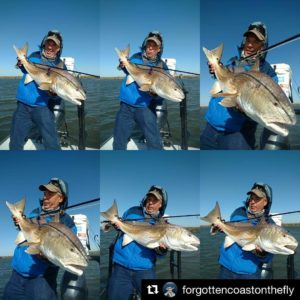 Bottom middle – what's your vote?    ・・・ The many faces of hoisting  of redfish …