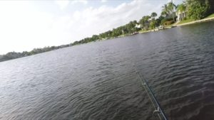 Quick GoPro Splice edit of some tarpon fishing from earlier this fall… The Sil…