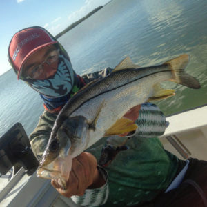 Small snook were a blast today on the  setups Including a very cool fat snook an…