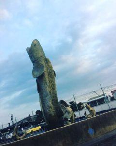 Soul of Big Giant Snakehead                               …