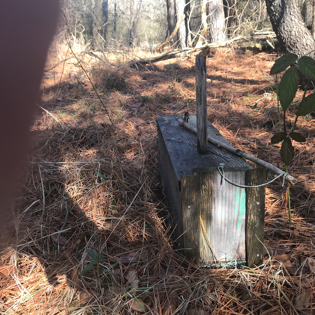 I was walking thru some woods behind my Papa's old house and came across an old ...