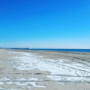 Atlantic Beach beautifully chilly.   …