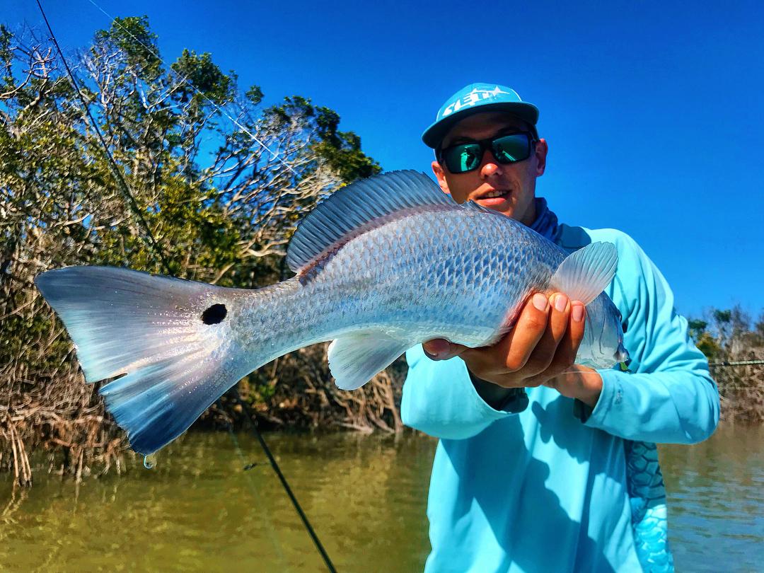 One Fish Two Fish Redfish Bluefish