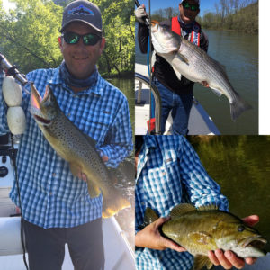 2017 was outstanding! I got my best Smallmouth 5lbs, My Best Brown 10lbs. I had …