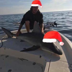 Merry Christmas ya filthy animals! . . . …