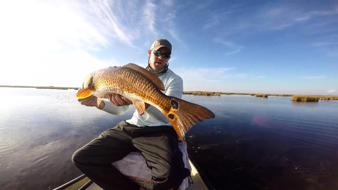 New Video! Redfish!