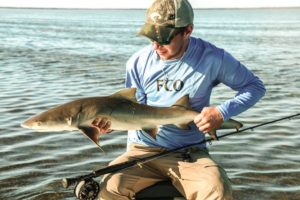 Everglades catching sharks on fly