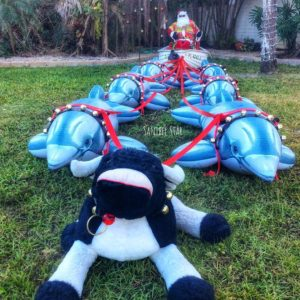 Santa in a bass boat, pulled by 8 dolphins…. what a wonderful island Christmas…