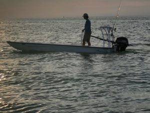mangrove-skiff