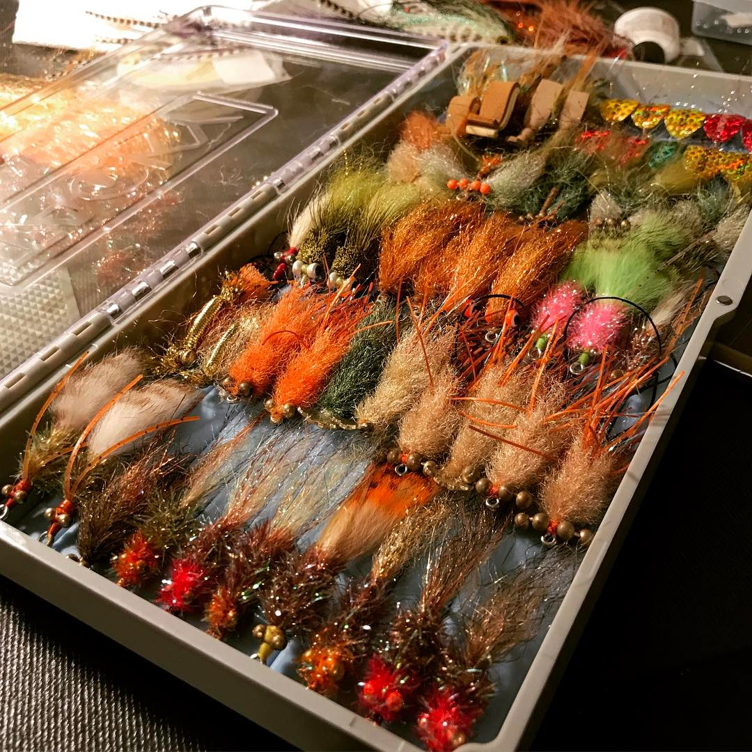 < ONE FISH TWO FISH REDFISH > - - -  ...