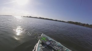 That sweet sound of drag! Bullbay Reel Animals no. 17 Rod, Florida Fishing Ospre…