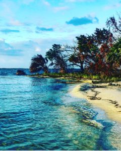 if I could on an island I would…