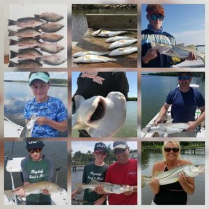 Few pics from the last few fishing trips.