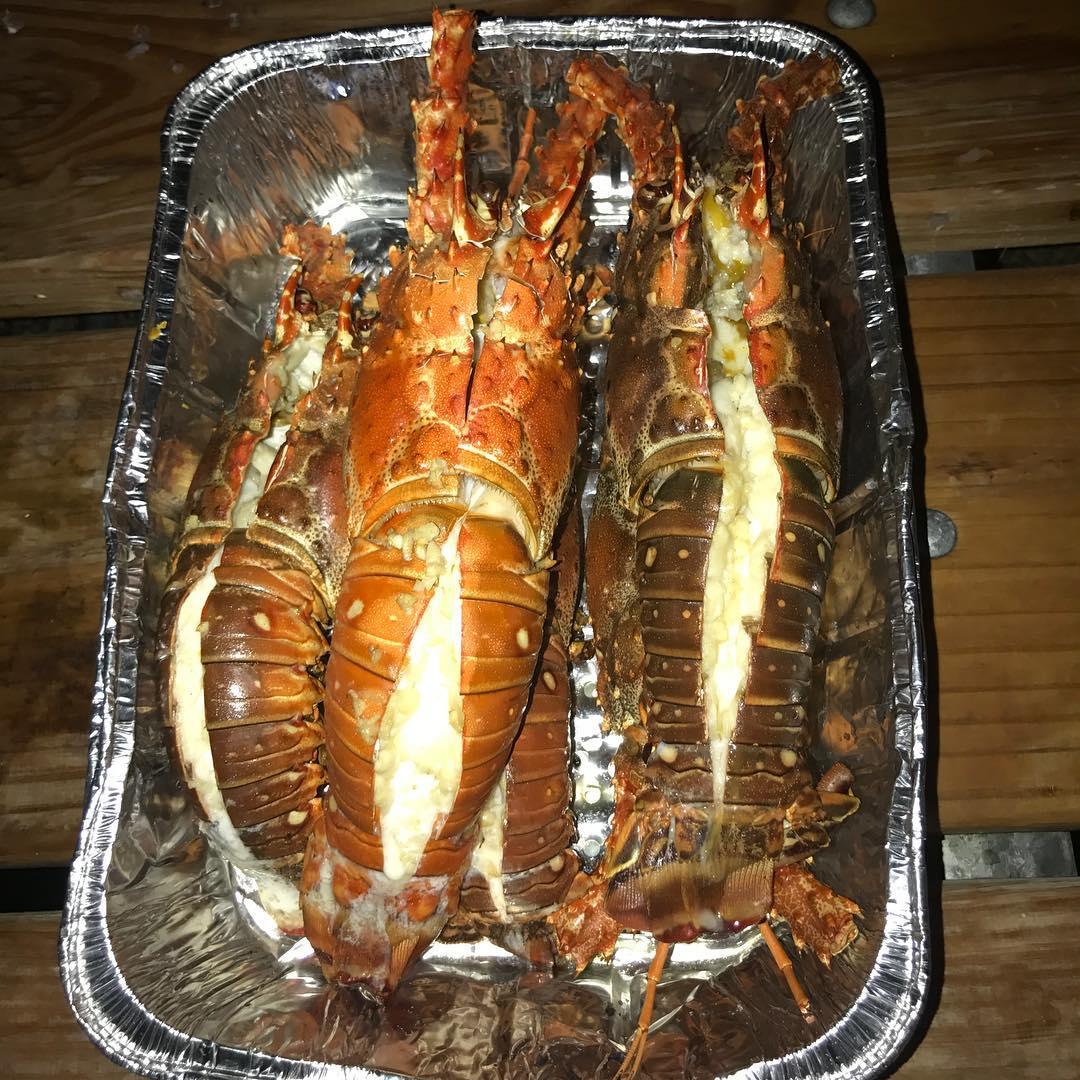 Fresh Lobsters for dinner!