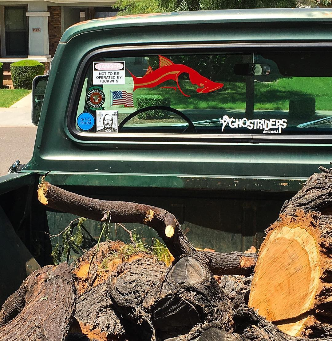 Got my  Snook decal.  A little slice of home here in the desert SW!             ...