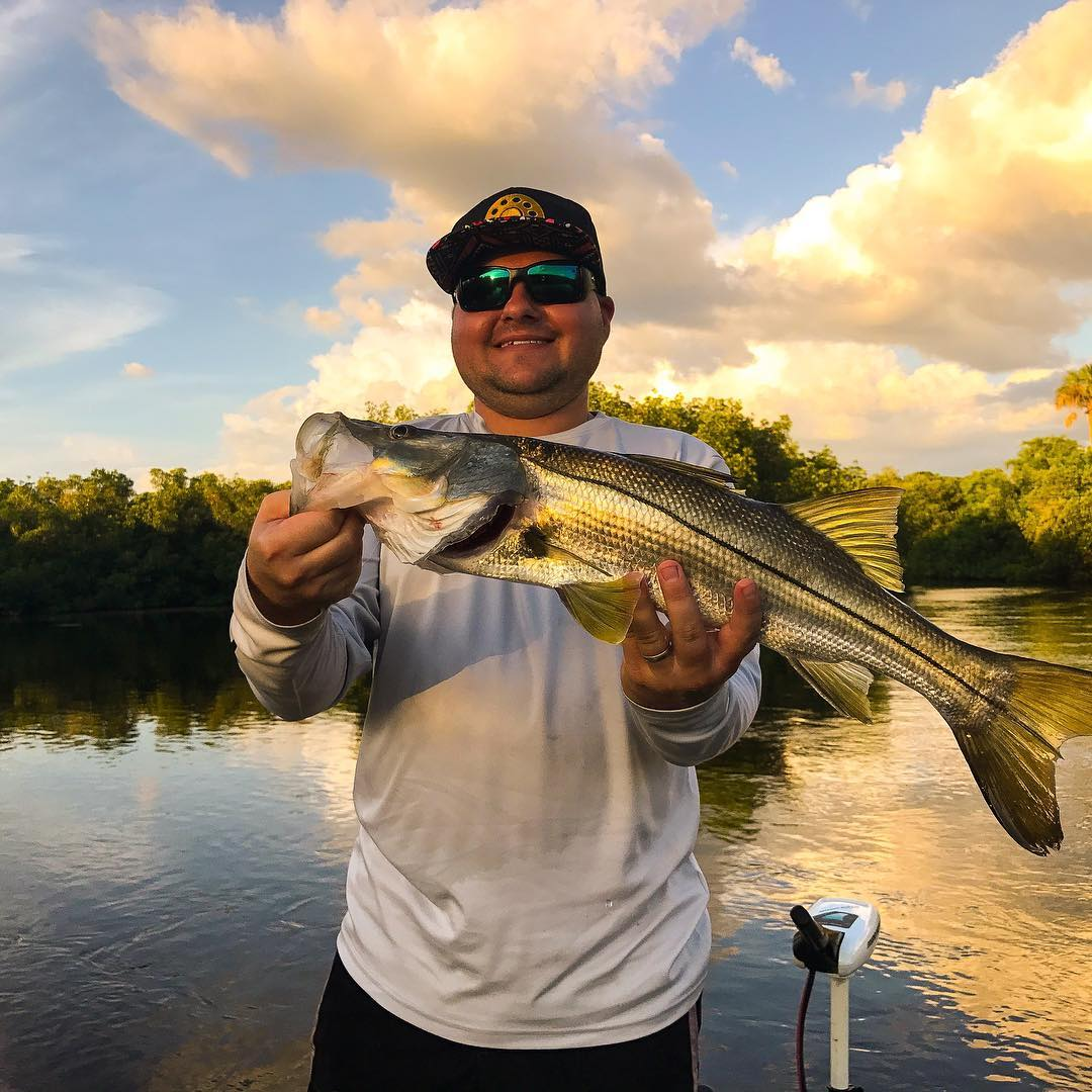 Sunset snook with                  ...