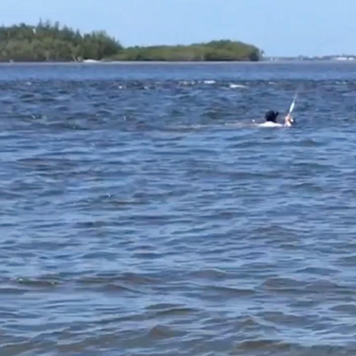 Swimming for em.   ...