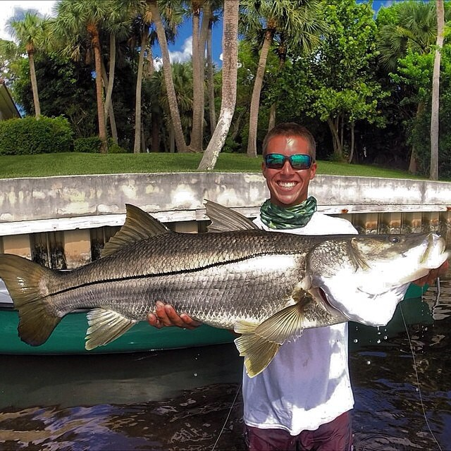 SWEET catch sent in from @ryannitz !