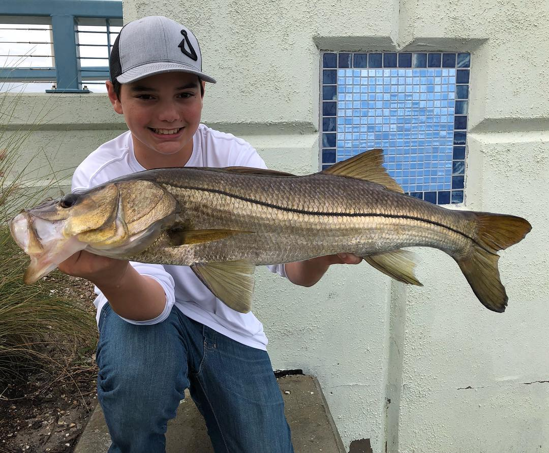 Wasting time with  turned out to be a pretty good snook bite