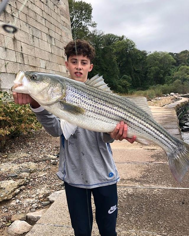 We got   with a  striper on the blue pencil popper. Awesome job!!!. . .